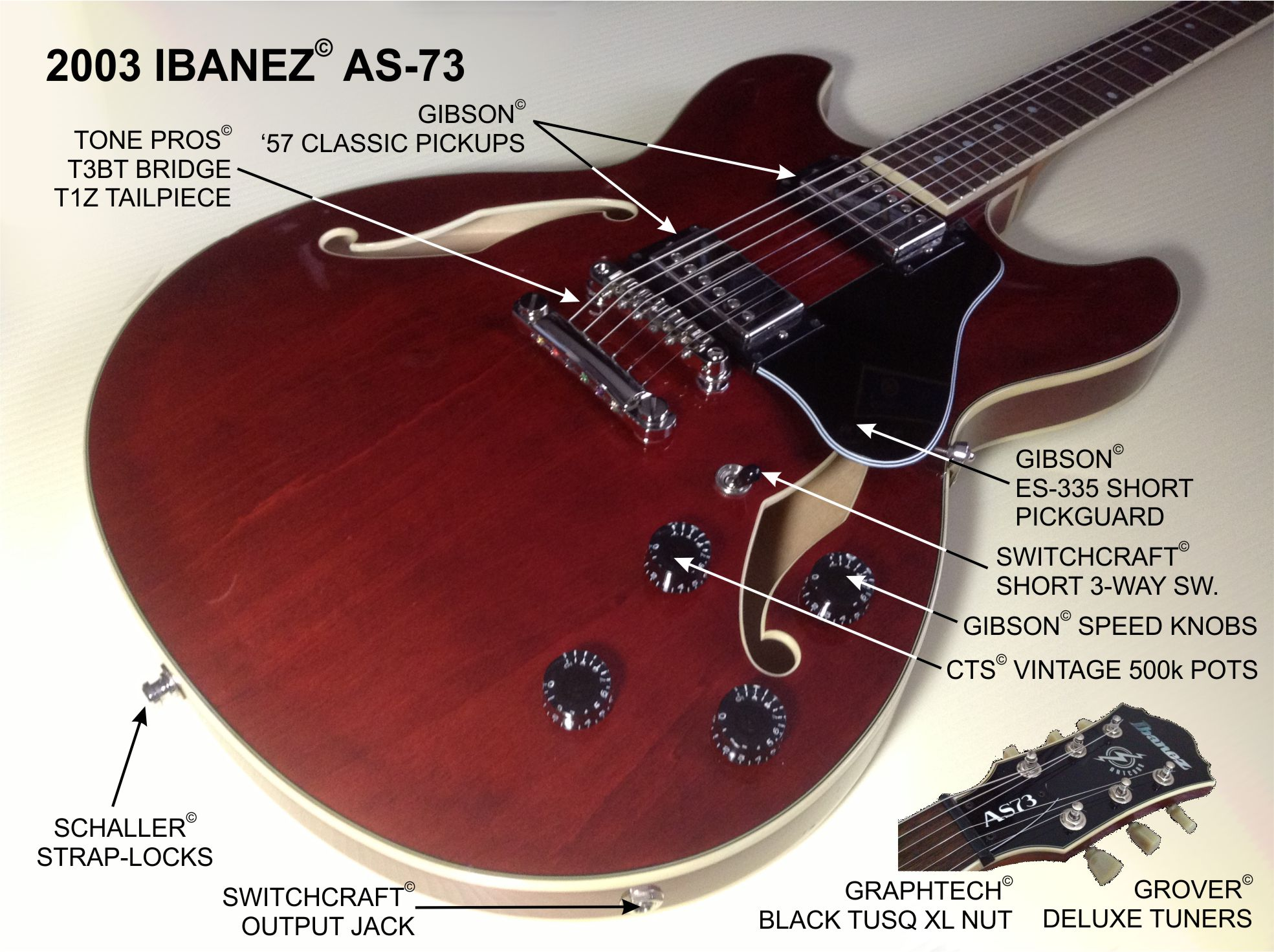Epiphone Riviera Wiring Diagram Library Chet Atkins Gibson Guitar Sheraton Ii Kit